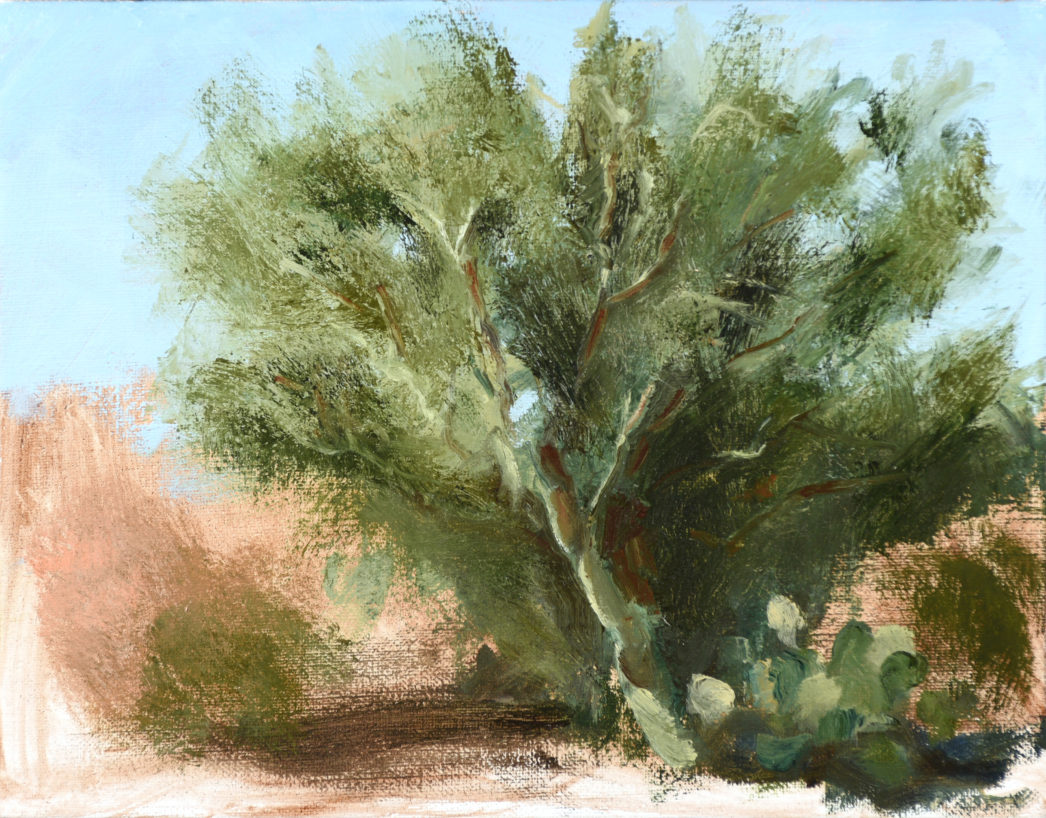 Palo Verde study