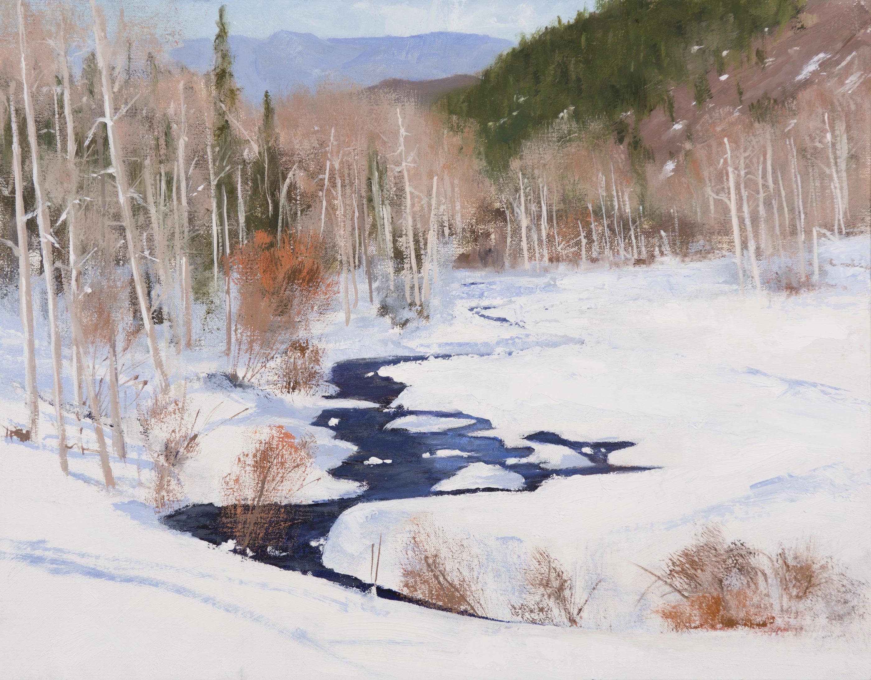 Colorado Winter Stream