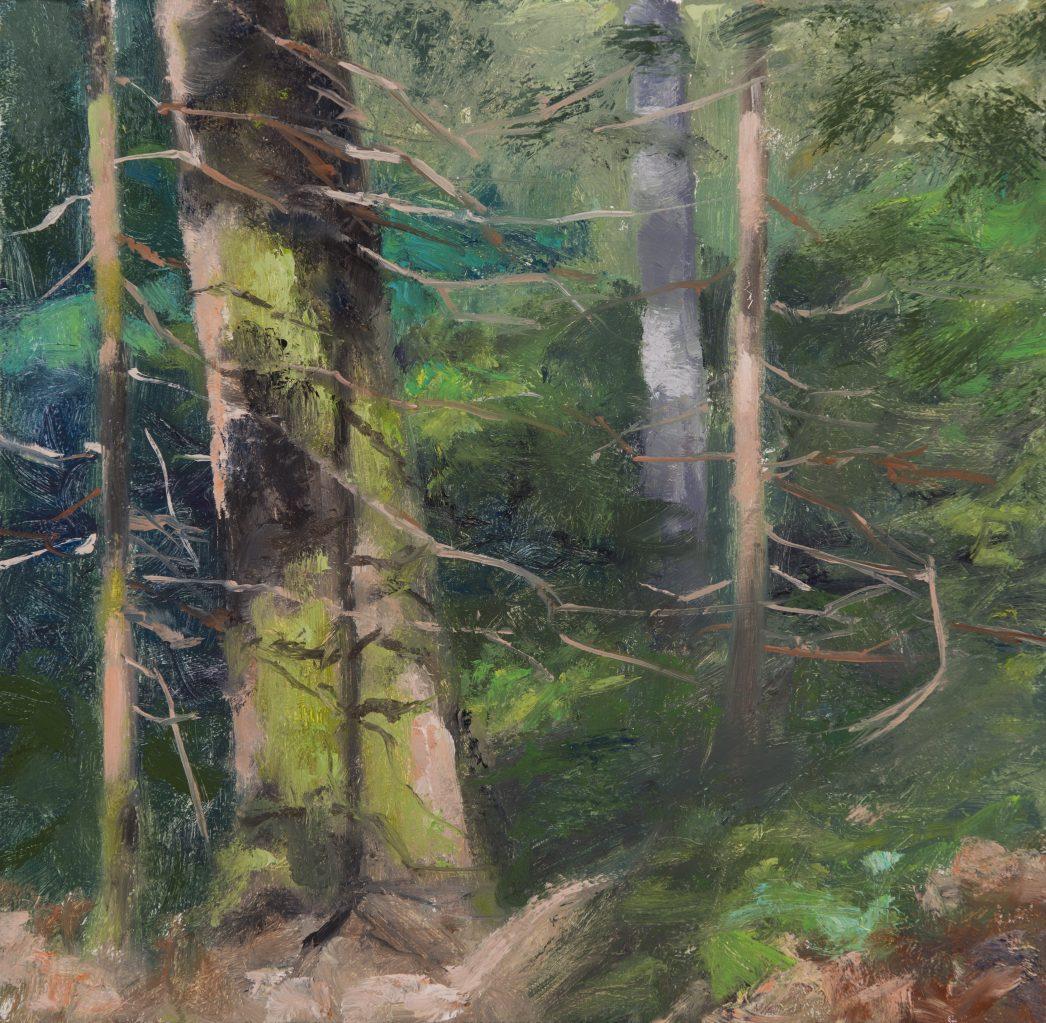 Deep Woods Oregon